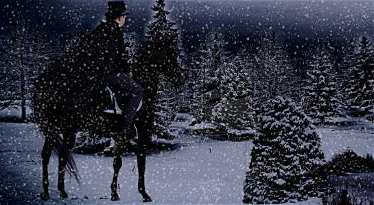 "Who has written the poem ""Stopping by the woods on a snowy eve""?"