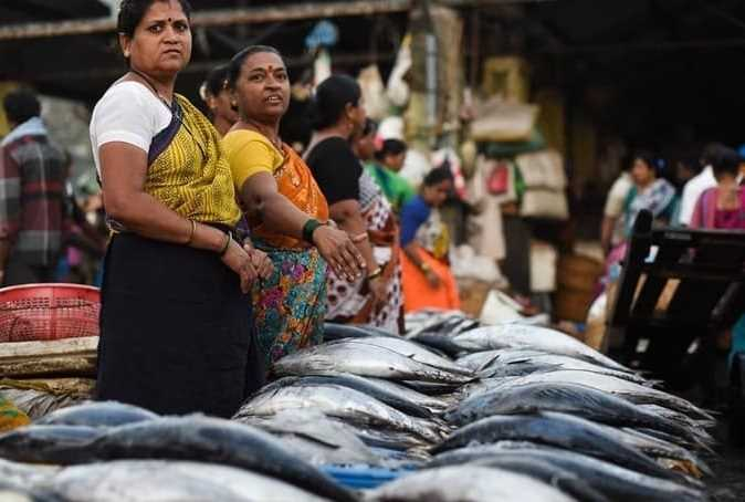 What is the position of Indian Fisheries in global market?