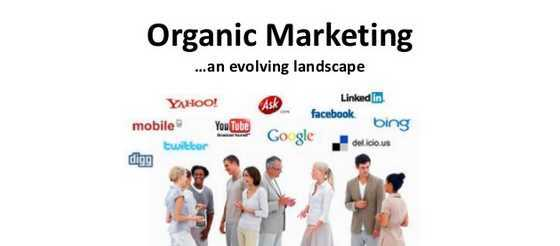 What is organic marketing in SEO and Social Media?